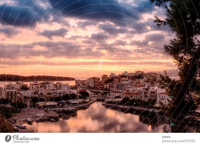 Der Tag beginnt Himmel Ferien & Urlaub & Reisen blau alt Sommer ruhig Wolken schwarz gelb Horizont rosa orange Idylle Schönes Wetter Insel ästhetisch