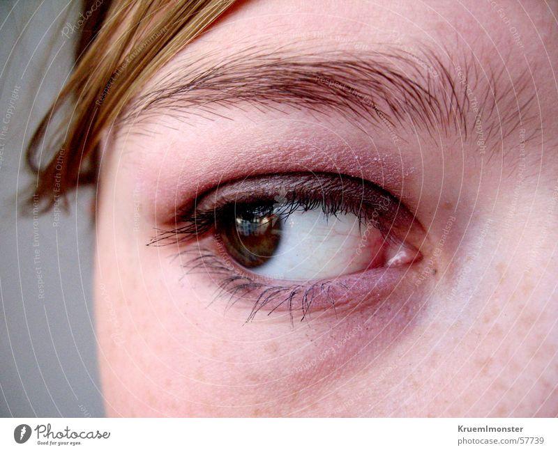 Verzweiflung Auge Traurigkeit Trauer Aussicht Wimpern Augenbraue Hoffnungslosigkeit Pupille