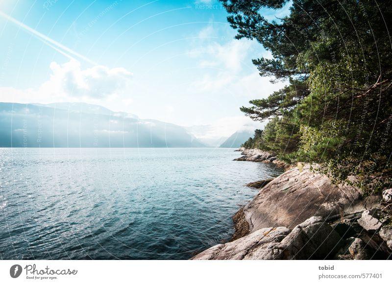 Tag am Meer Himmel Natur Ferien & Urlaub & Reisen blau grün Wasser Sommer Sonne Baum Landschaft Wolken Tier Ferne Berge u. Gebirge Gras