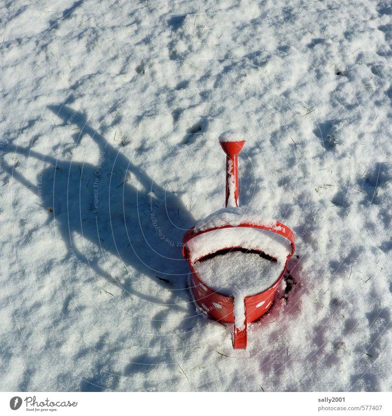 im Garten vergessen... Winter Schönes Wetter Eis Frost Wiese Gießkanne stehen warten exotisch kalt rot weiß Frühlingsgefühle ruhig Einsamkeit Endzeitstimmung