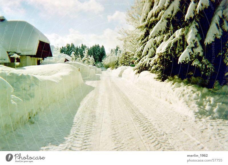Winterallee Winter Straße Schwarzwald
