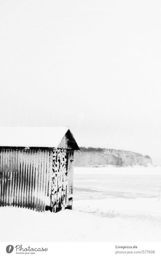 Wreechen/Rügen Landschaft Winter Eis Frost Schnee Küste grau schwarz weiß Schwarzweißfoto Menschenleer Tag Kontrast