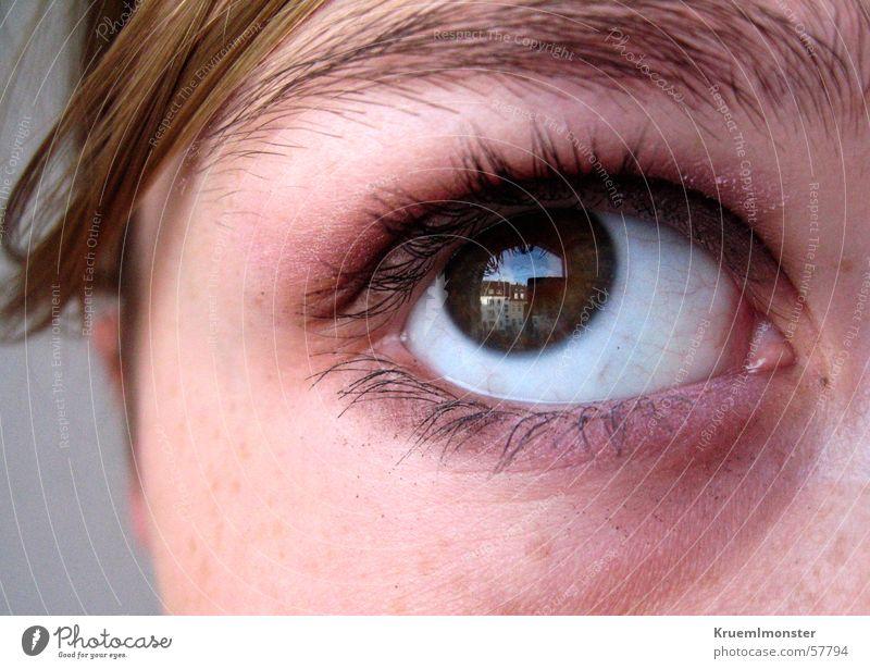 Hoffnung??? Trauer Verzweiflung Wimpern Pupille braun Haus Reflexion & Spiegelung Augenbraue Blick nach oben eye Traurigkeit Aussehen