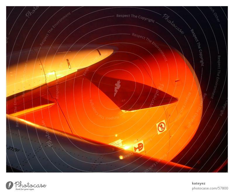 Easyjet Flugzeug Sonne Ferien & Urlaub & Reisen Luft hell orange fliegen Luftverkehr über den Wolken