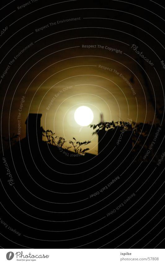 little moon of horror Baum Wolken Nacht unheimlich Werwolf gruselig Schornstein Vollmond Mond weinen Schatten grau spritzen