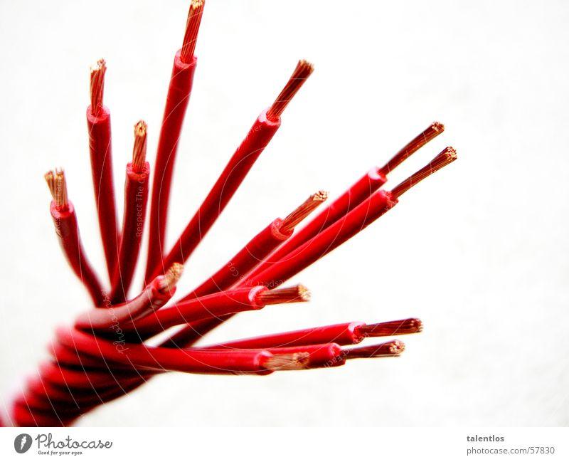 geflecht rot Elektrizität Kabel Gefäße elektronisch kupfer Elektronik netzartig Elektrisches Gerät verdrillt