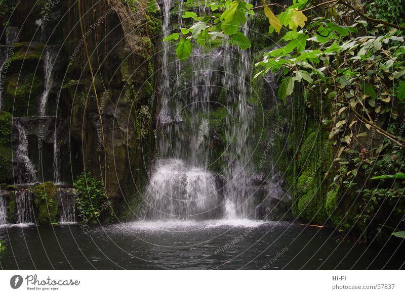 Wasserfall Teich See Geplätscher Gebirgssee Wildbach Natur Regen wasserspiel Sprühwasser