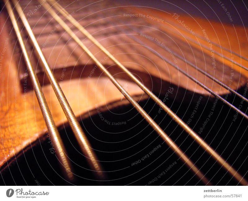 Mandoline Musik Konzert Musikinstrument Lied Saite Volksmusik Saiteninstrumente Zupfinstrumente Mandoline