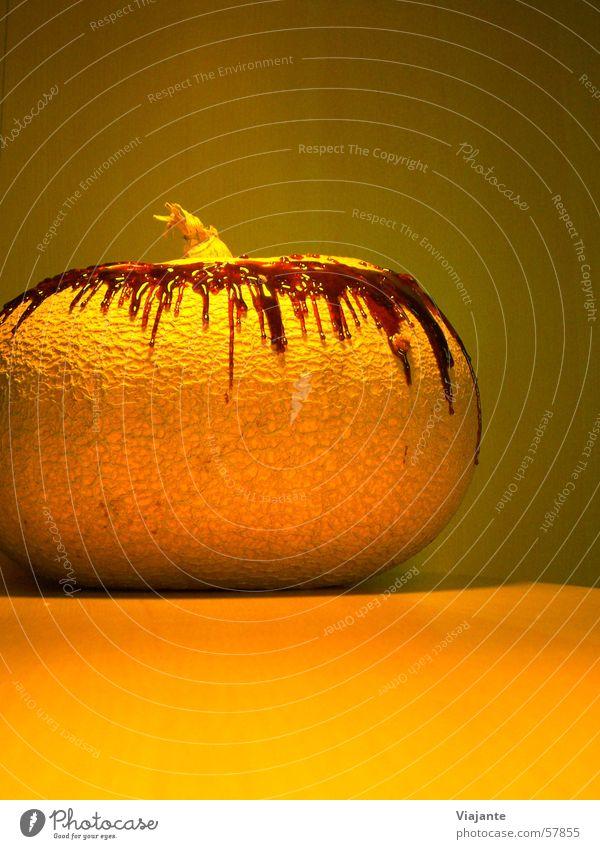 Shrimpsversteck Natur Garten orange Lebensmittel Ernährung Küche Ernte Beeren Halloween Produktion Kürbis Zutaten
