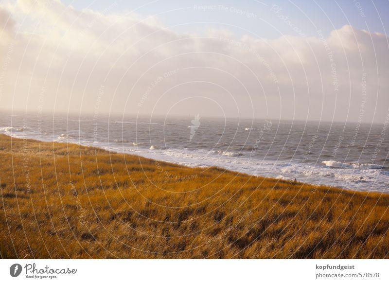Einfach mal Natur Himmel Natur Wasser Pflanze Sonne Meer Landschaft Tier Umwelt Wärme Gras Küste Sand See Stimmung Luft