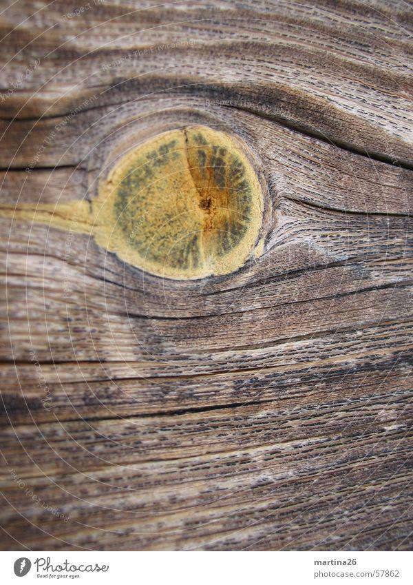 Astloch Natur Wärme Holz Linie braun Physik Holzbrett Oberfläche Maserung Brennholz Holzleiste Makroaufnahme Holzmehl Nutzholz Haptik