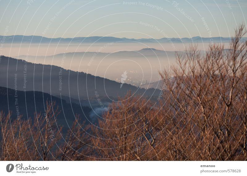 Über dem Nebel Himmel Natur Ferien & Urlaub & Reisen Stadt Pflanze Baum Landschaft Wolken Ferne Wald Berge u. Gebirge Herbst Freiheit Luft Wetter