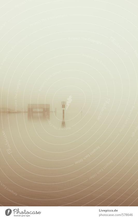 Sumpfsee xxx2 Himmel Natur weiß Wasser Pflanze Landschaft schwarz gelb Herbst grau Nebel nass Seeufer schlechtes Wetter