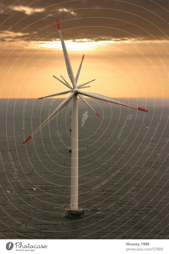 Windblume Meer Kraft Energiewirtschaft Flügel Windkraftanlage Erneuerbare Energie Sonnenuntergang synchron
