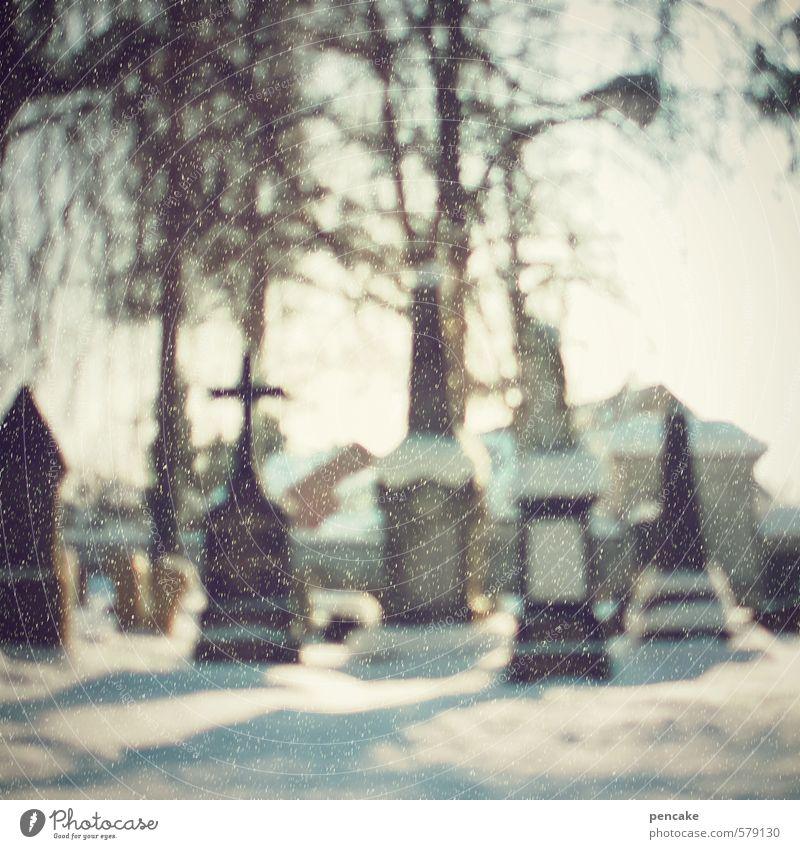 still und starr Kultur Natur Himmel Winter Schnee Schneefall Baum Kleinstadt Stadtrand Denkmal Stein Zeichen frieren schlafen warten Senior Partnerschaft