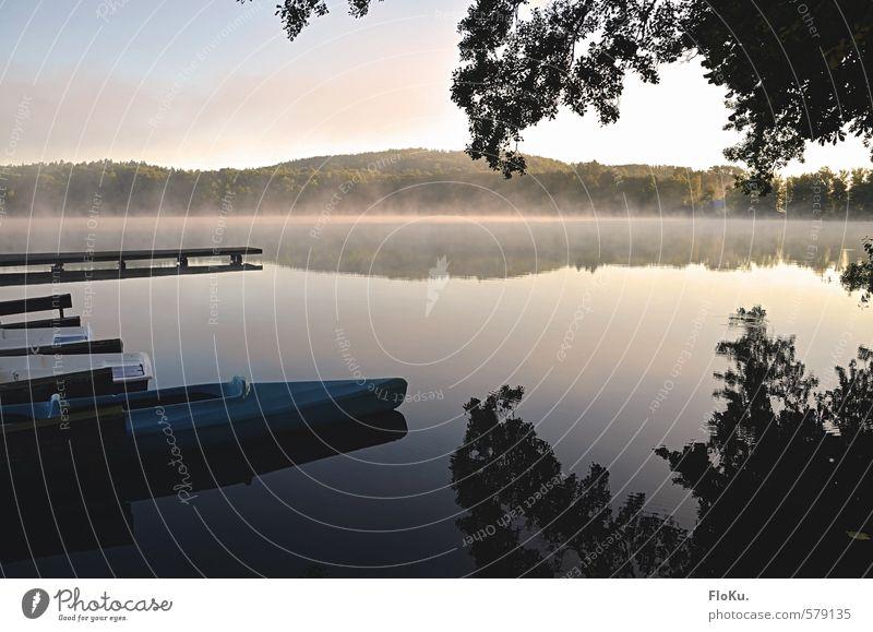 Stille liegt über dem See... Freizeit & Hobby Ferien & Urlaub & Reisen Ausflug Umwelt Natur Landschaft Tier Urelemente Wasser Himmel Sonnenaufgang