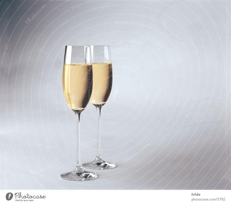 sekt Glas Sekt Prosecco Getränk Weißwein Alkohol Feste & Feiern Valentinstag