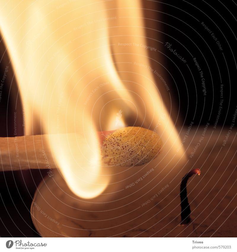 Advent Licht Brennt Weihnachten & Advent gelb Wärme hell braun gold Häusliches Leben Dinge Warmherzigkeit weich Feuer Kerze gut heiß Streichholz anzünden