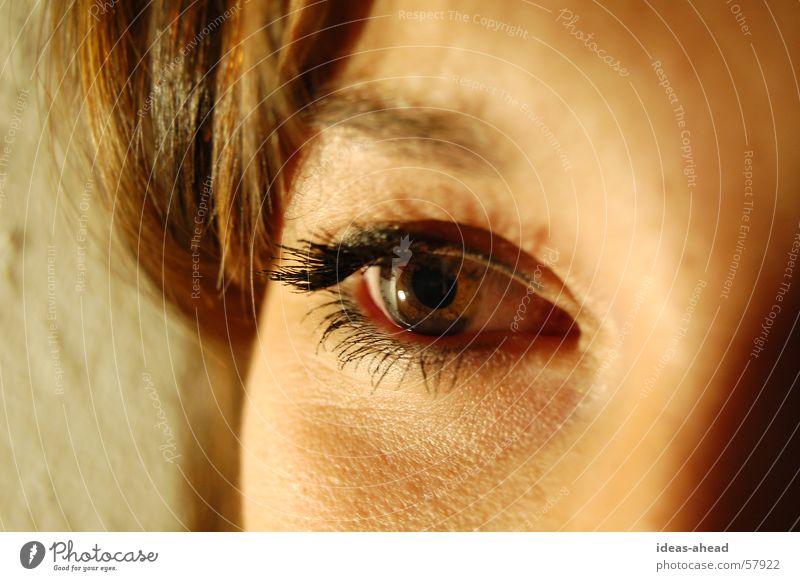 Eye-Catcher° Frau Gesicht Auge Klarheit Junge Frau Eyecatcher braunes Auge