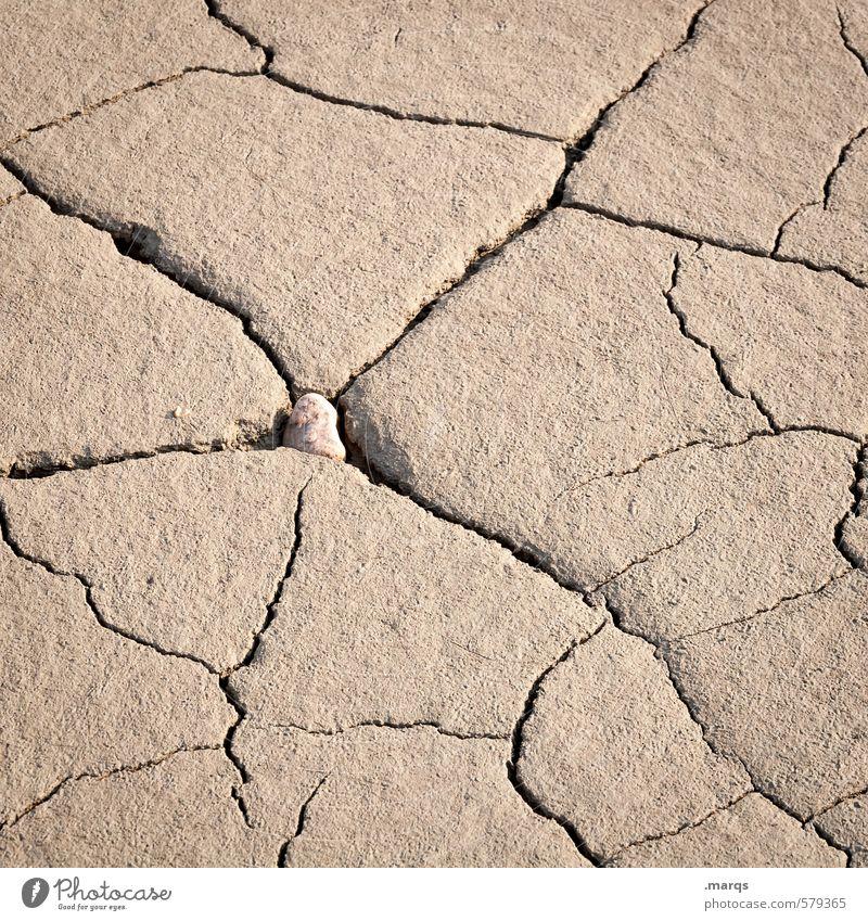 Mutter Erde Umwelt Natur Urelemente Klimawandel braun trocken dehydrieren Dürre Lehm Krise Riss vertrocknet natürlich unten Farbfoto Außenaufnahme Nahaufnahme
