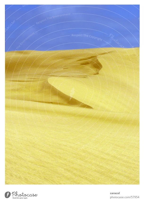 sand sculpture Himmel gelb Neuseeland Sand landscape sky Wüste desert blue Düne