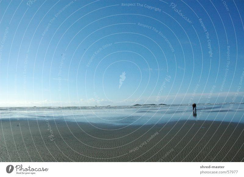 zweisamkeit am strand Strand Liebespaar Meer Spaziergang paarweise
