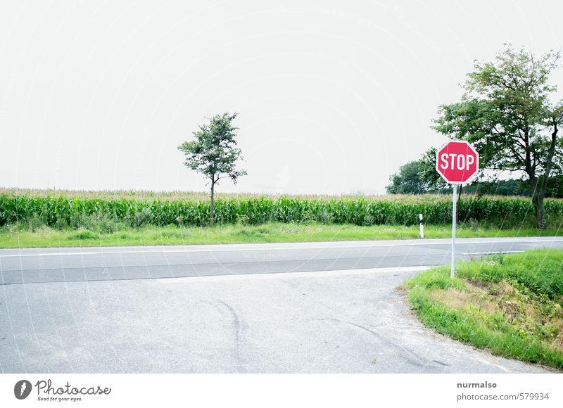 green STOP Ferien & Urlaub & Reisen Tourismus Ausflug Joggen wandern Kunst Natur Landschaft Feld Verkehr Autofahren Straße Straßenkreuzung Verkehrszeichen