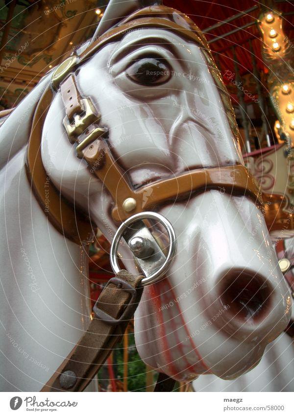 A horse with no name Pferd Spielzeug glänzend Karussell Geschirr Halfter Freizeit & Hobby Außenaufnahme Freude Makroaufnahme Jahrmarkt