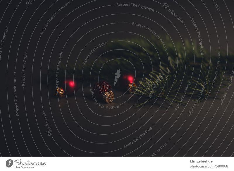 Tannenzweig mit Christbaumkugeln Tier Tannennadel Dekoration & Verzierung Kitsch Krimskrams Holz Zeichen ästhetisch natürlich grau grün rot Vertrauen