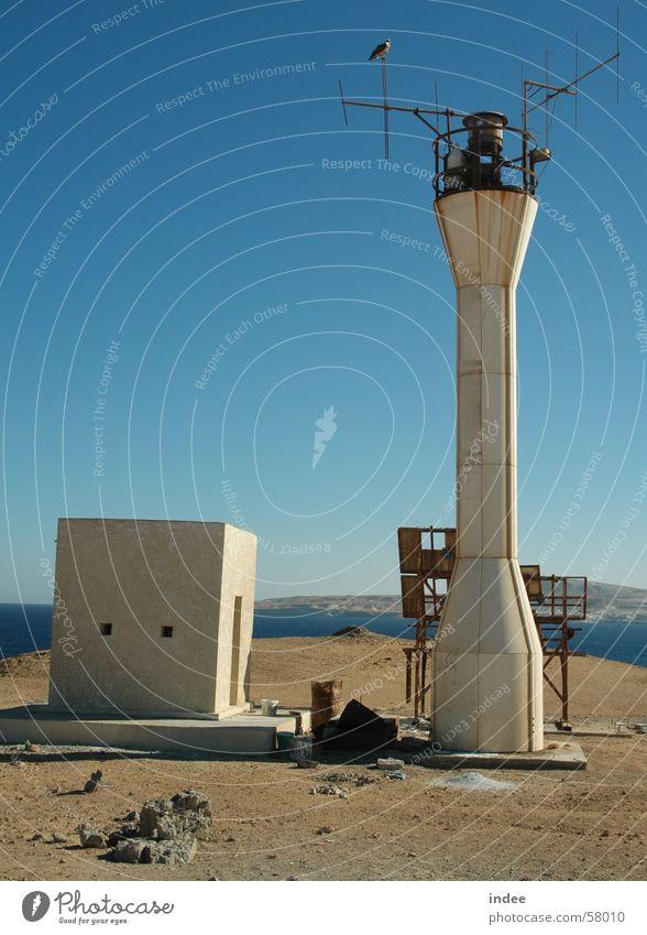 Leuchtfeuer Insel Leuchtturm Blauer Himmel Adler Seeadler