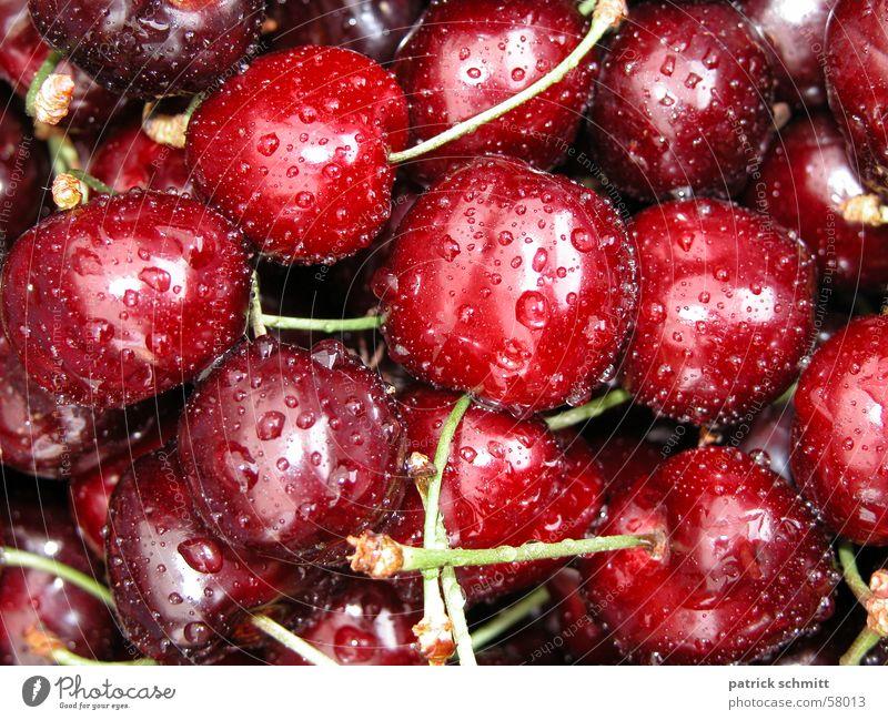 Cherries rot nass Frucht frisch lecker Kirsche