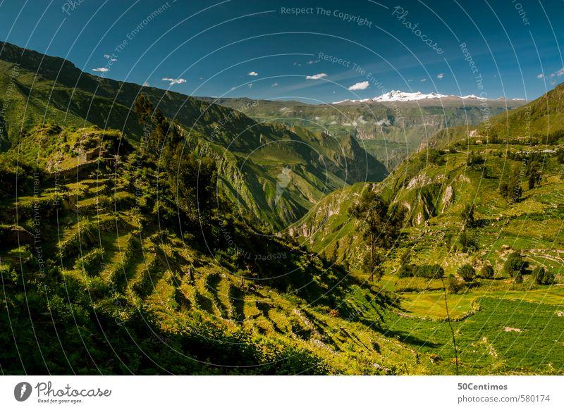 Grüne Berge rund um eine Schlucht in Peru Himmel Ferien & Urlaub & Reisen grün Sommer Landschaft ruhig Ferne Umwelt Berge u. Gebirge Wiese Freiheit Horizont