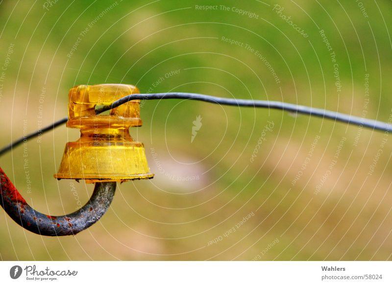 Gelber Strom Zaun Draht Elektrizität Feld Wiese gelb Pfosten Stromschlag Rost
