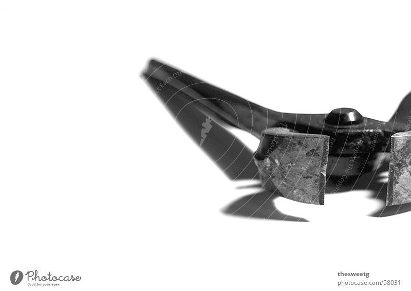 Zange Metall gefährlich Beruf fangen Maschine Werkzeug Gerät Musikinstrument ernst Nervosität Nagel Apparatur Arbeitsgeräte zwicken unheilbringend