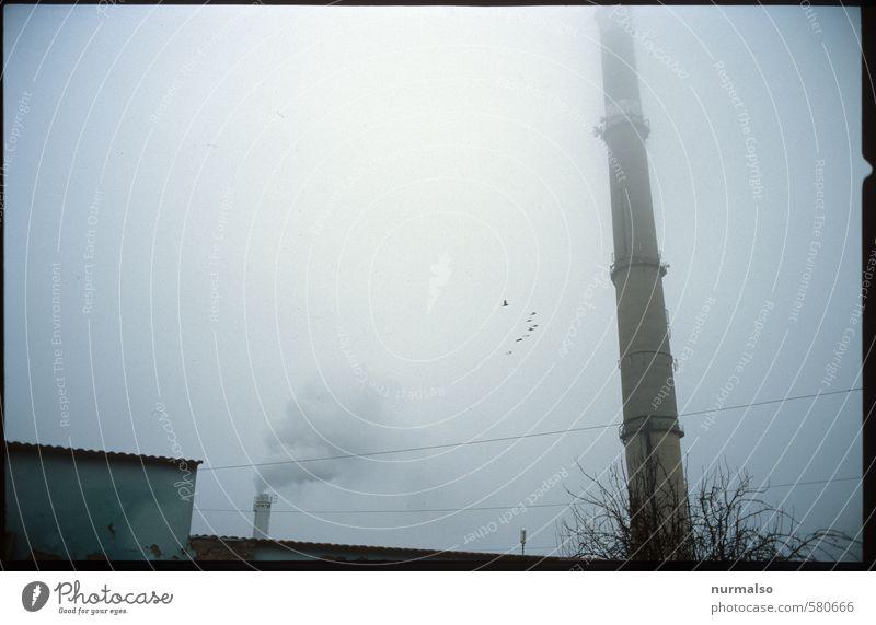 Konsumnebel Energiewirtschaft Kohlekraftwerk Energiekrise Industrie Umwelt Natur Herbst Winter Klima Klimawandel schlechtes Wetter Nebel Bauwerk Schornstein