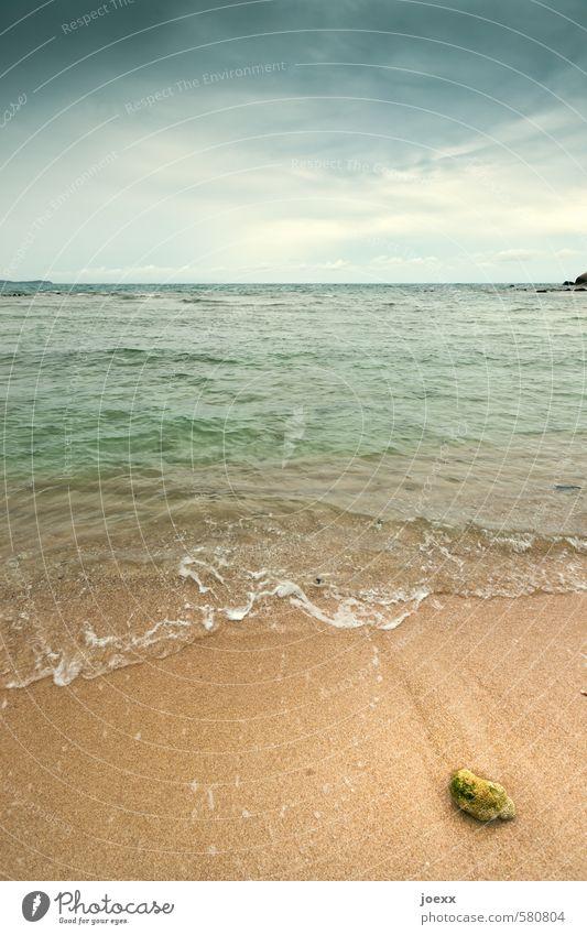 Du suchst das Meer Himmel Natur blau schön grün Wasser Sommer Einsamkeit ruhig Wolken Stein Sand braun Horizont Idylle