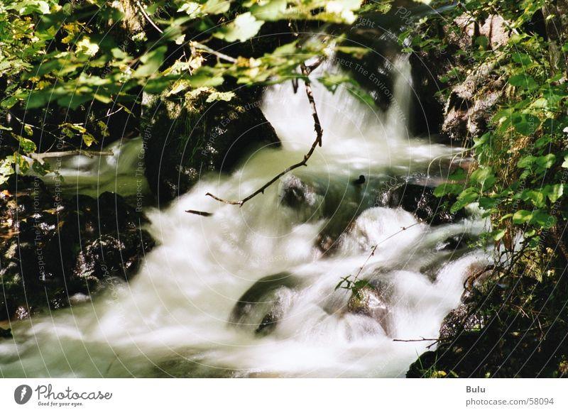 am rauschenden Bach.... Außenaufnahme Langzeitbelichtung Rauschen Wildbach Wasser Wasserfall Natur Gischt ursprünglich wild Flußwasser