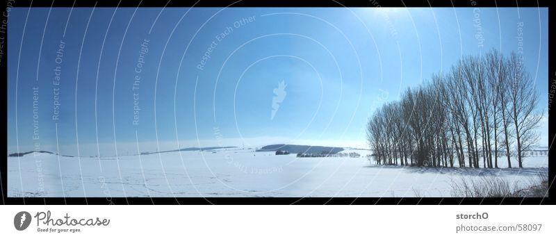 landscape Panorama (Aussicht) Baum schön Thüringen Schnee Sonne blau groß Panorama (Bildformat)