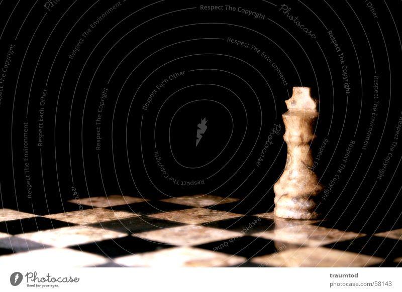 Last Man Standing II. schwarz weiß Muster Pferd Spielen Gesellschaftsspiele Einsamkeit Schachbrett chess Schwarzweißfoto schwerzweiss Makroaufnahme König Dame