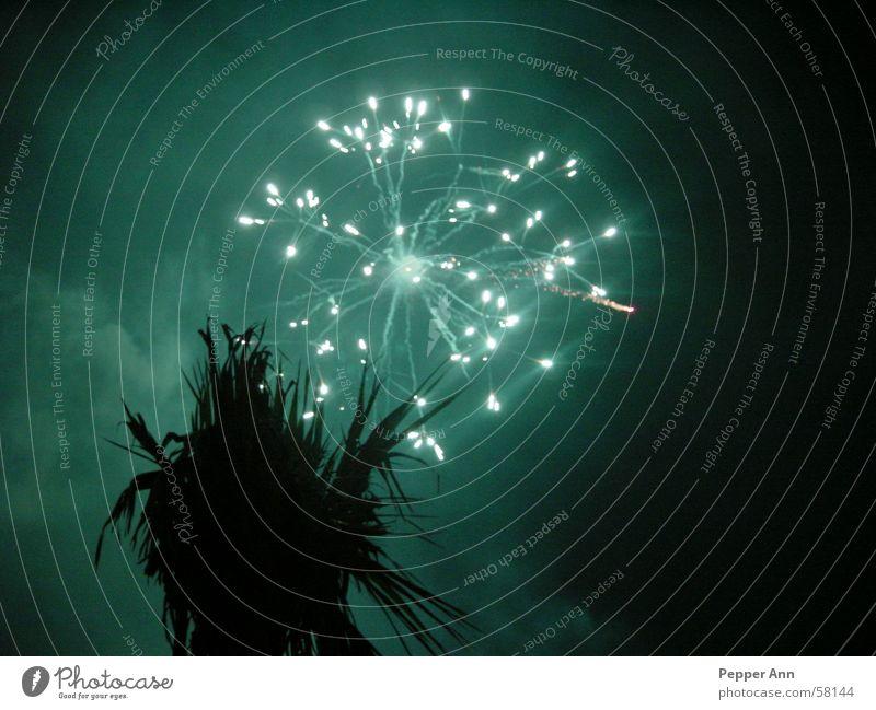 mallorca unter feuer dunkel Feuerwerk Palme