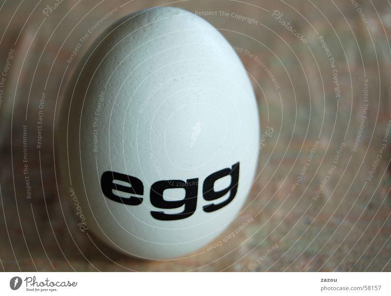 ein Ei Ostern Osterei Kunst Skulptur Eierschale Haushuhn Ernährung Schriftzeichen Kolumbus Denkmal