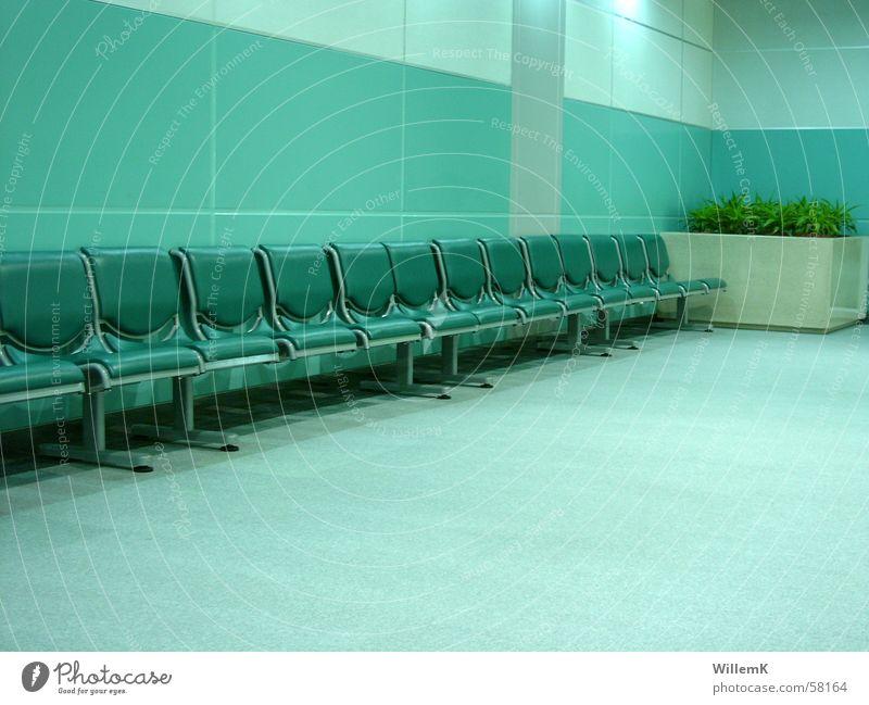 Flughafen Airport Gate grün Pflanze Wartesaal China