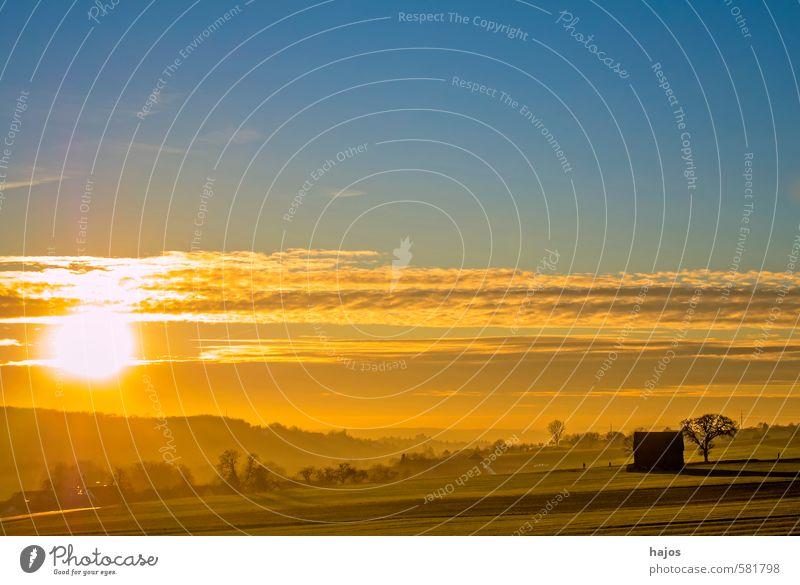 Sonnenuntergang auf dem Land Natur Landschaft Wolken Sonnenaufgang Sonnenlicht Schönes Wetter Baum Wiese Feld Hügel Hütte dunkel hell weich blau gelb Stimmung