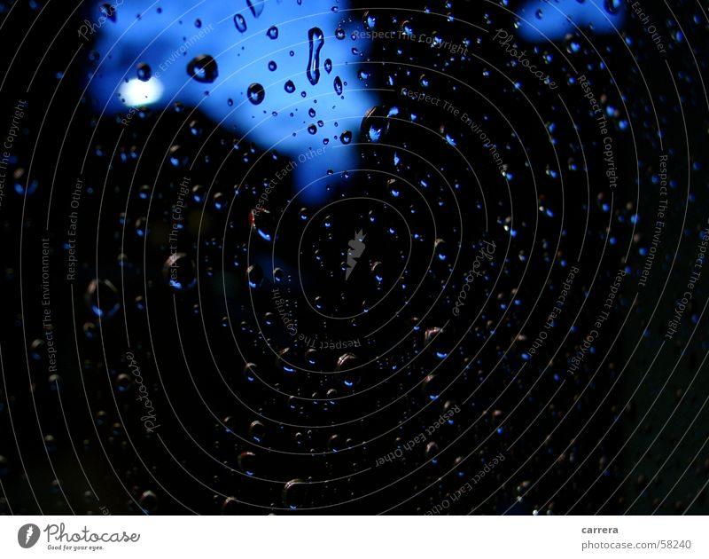 Regentropfen die an mein Fenster klopfen blau schwarz dunkel Herbst Fenster Traurigkeit Regen Wetter Wassertropfen nass Trauer Aussicht Fensterscheibe