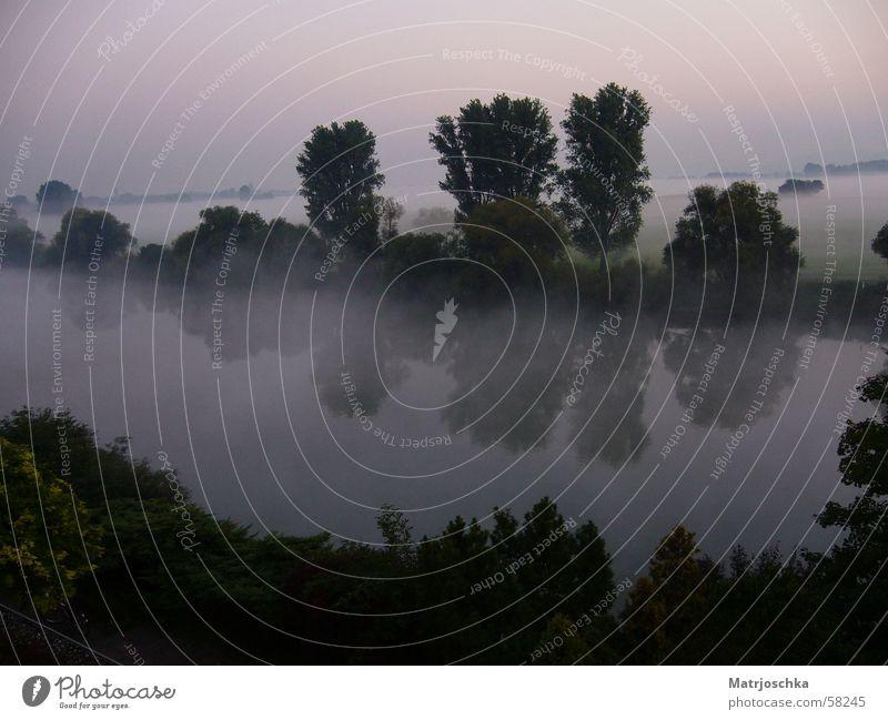 Neblige Reflexionen Wasser Himmel Baum See Landschaft Stimmung Nebel Fluss Romantik Idylle mystisch