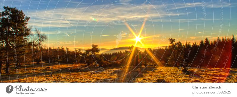 Sonnenaufgang, Sunrise Himmel Natur Ferien & Urlaub & Reisen Pflanze Sommer Baum Erholung Landschaft Wolken Tier Wald Umwelt Berge u. Gebirge Wiese Herbst
