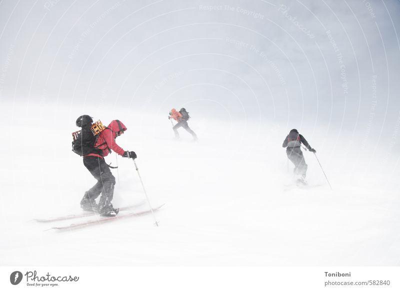 Gegenwind Mensch Jugendliche 18-30 Jahre kalt Berge u. Gebirge Erwachsene Schnee Sport Kraft bedrohlich Abenteuer Zusammenhalt Skifahren Klettern sportlich Leidenschaft