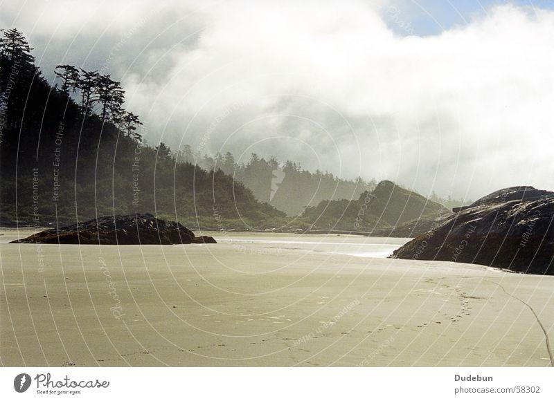 Morning, Tofino Strand Sand Nebel Sonnenaufgang Westküste Wald Pazifikstrand Kanada Küste morning fog rocks trees west coast Vancouver Island rainforest