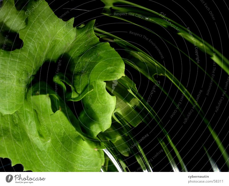 Salat 1 grün Blatt Sand Metall Küche Schalen & Schüsseln