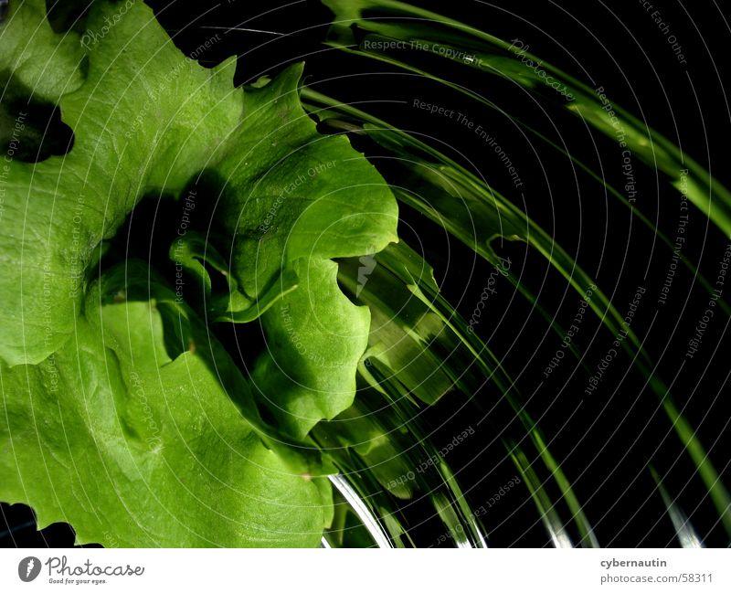 Salat 1 grün Blatt Sand Metall Küche Schalen & Schüsseln Salat